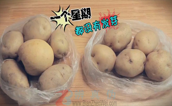 放苹果可延缓土豆长芽实验第二步骤