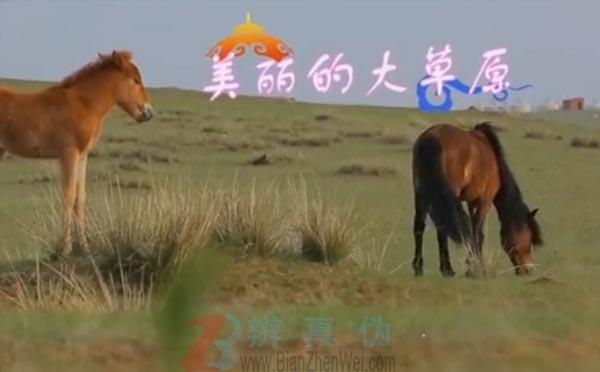 传统的蒙古族美食风干牛肉是生肉是真的。距离呼和浩特100公里外的希拉穆仁草原——辨真伪网