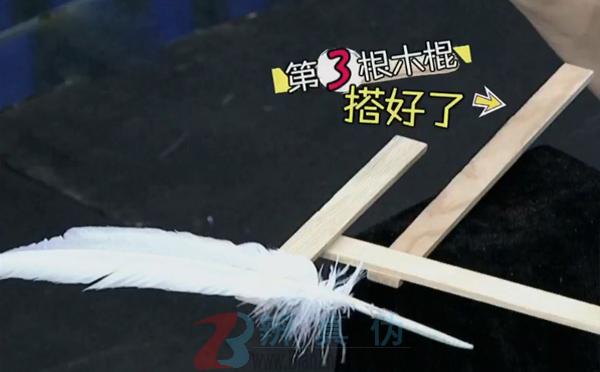 借助羽毛可以让搭在一起的木棍保持平衡的实验第三步骤