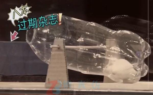用塑料瓶做捕鼠器可轻松抓老鼠是真的。瓶口被重物平台完全封住了,小白鼠根本无法钻出来——辨真伪网
