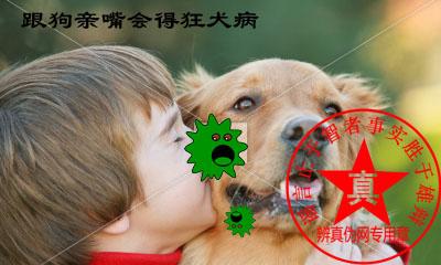 跟狗亲嘴会得狂犬病是真的——辨真伪网