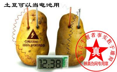 土豆可以当电池用的方法是真的——辨真伪网
