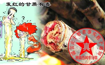 发红的甘蔗有毒是真的。发红的,发糠了、有点酒糟味的、汁比较少就不要吃了——辨真伪网