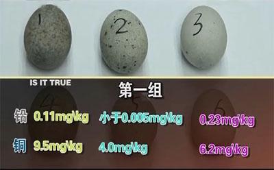 皮蛋铅和铜含量图表一