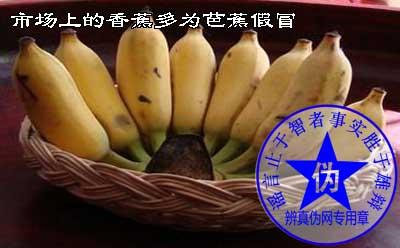 市场上的香蕉多为芭蕉假冒——辨真伪网