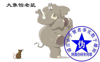 大象怕老鼠是谣言。在野外能够捕食大象的动物是非常少的,老鼠就更不用提了——辨真伪网