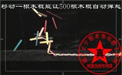 移动一根木棍能让500根木棍自动弹起是真的。弹簧就是非常典型的例子——辨真伪网