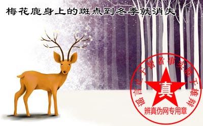 梅花鹿身上的斑点到冬季就消失是真的。如果想看到身开白梅的梅花鹿夏天是最佳的观赏时机——辨真伪网