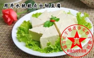 用井水就能点出韧豆腐是真的——辨真伪网