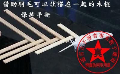 借助羽毛可以让搭在一起的木棍保持平衡是真的——辨真伪网