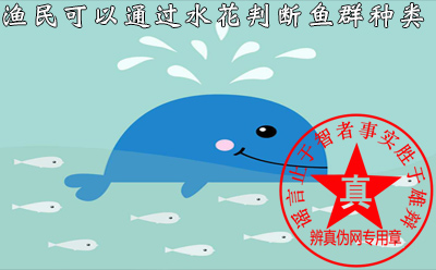 渔民可以通过水花判断鱼群种类是真的——辨真伪网