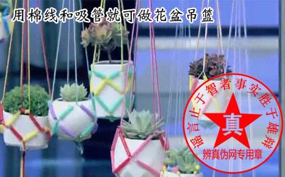 用棉线和吸管就可做花盆吊篮是真的——辨真伪网