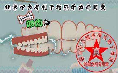 经常叩齿有利于增强牙齿牢固度是真的——辨真伪网